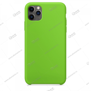 Silicone Case (Soft Touch) для iPhone 11 Pro зеленый