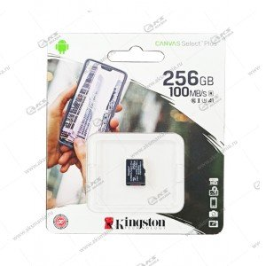 Карта памяти 256GB microSDXC Kingston Class 10 Canvas Select Plus A1 (100 Mb/s) без адаптера