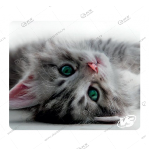 """Коврик для мышки VS """"Cat"""", Рис.5 (194*233*3 мм), полипропилен+вспененный пластик"""