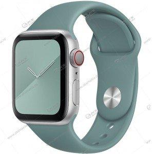 Ремешок силиконовый для Apple Watch 42mm/ 44mm кактус