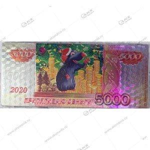 Магнит 5000 рублей с мышкой 14см-6,5см